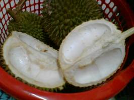 Durian 04